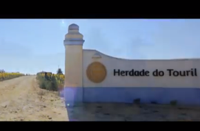 Herdade do Touril - Swimming